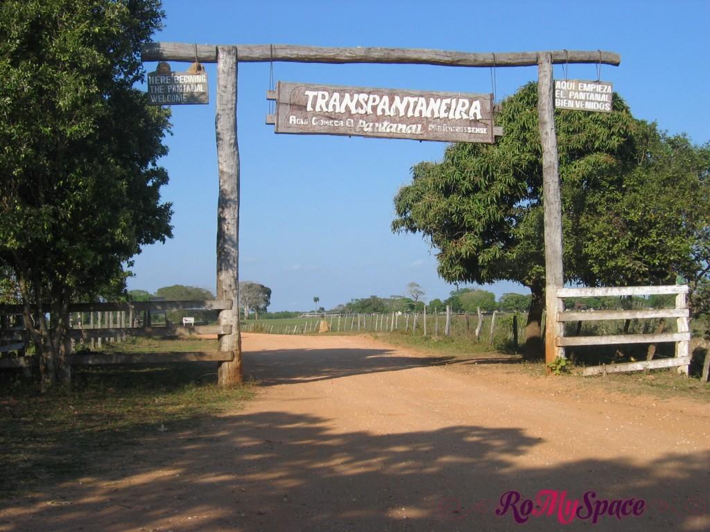 Pantanal - Transpantaneira