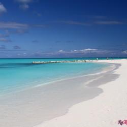Turks and Caicos, un paradiso tropicale nel mar dei caraibi