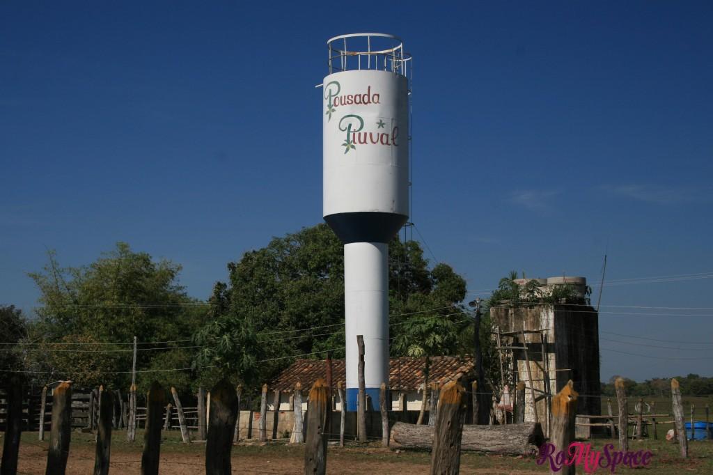 Pantanal - Pousada Piuval