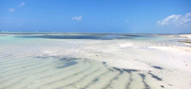 Le spiagge di Zanzibar, uno dei paradisi dell'Oceano Indiano