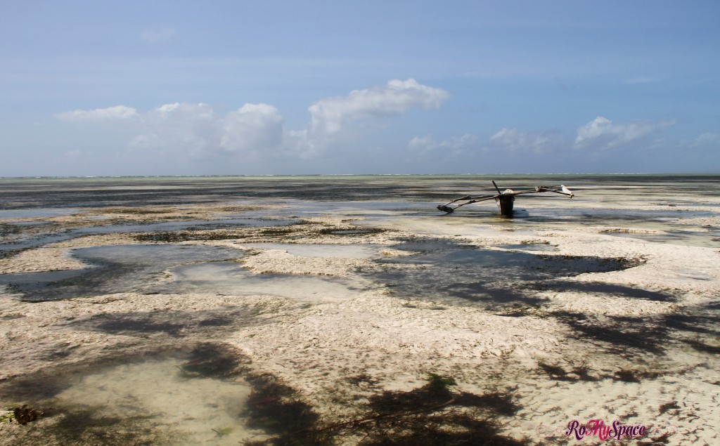 Zanzibar - massa marea