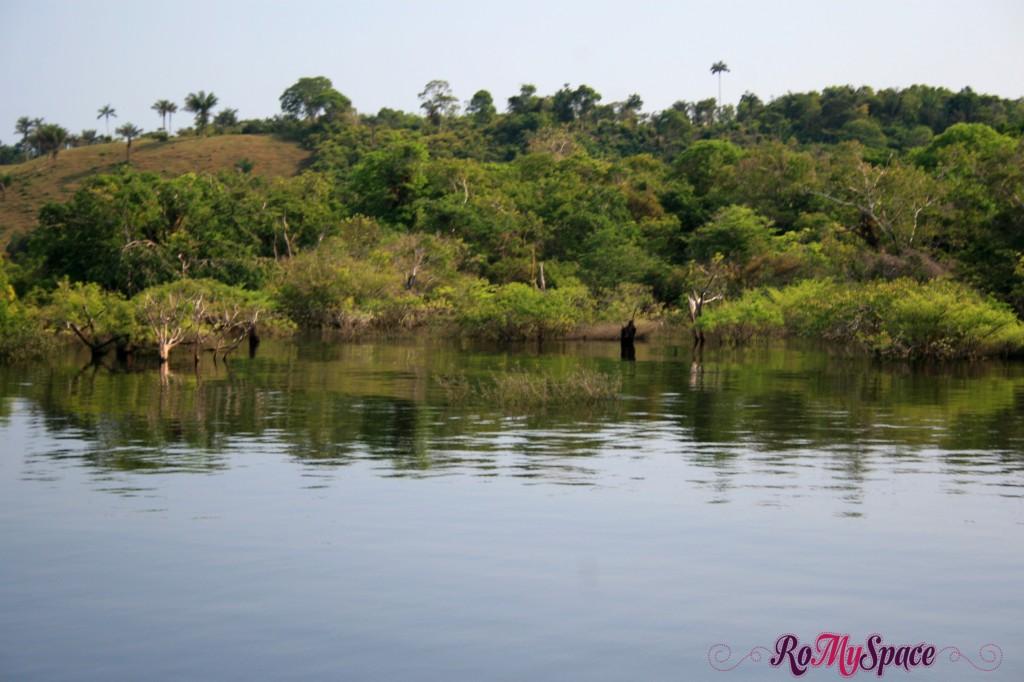 Navigando sul Rio Negro in Amazzonia