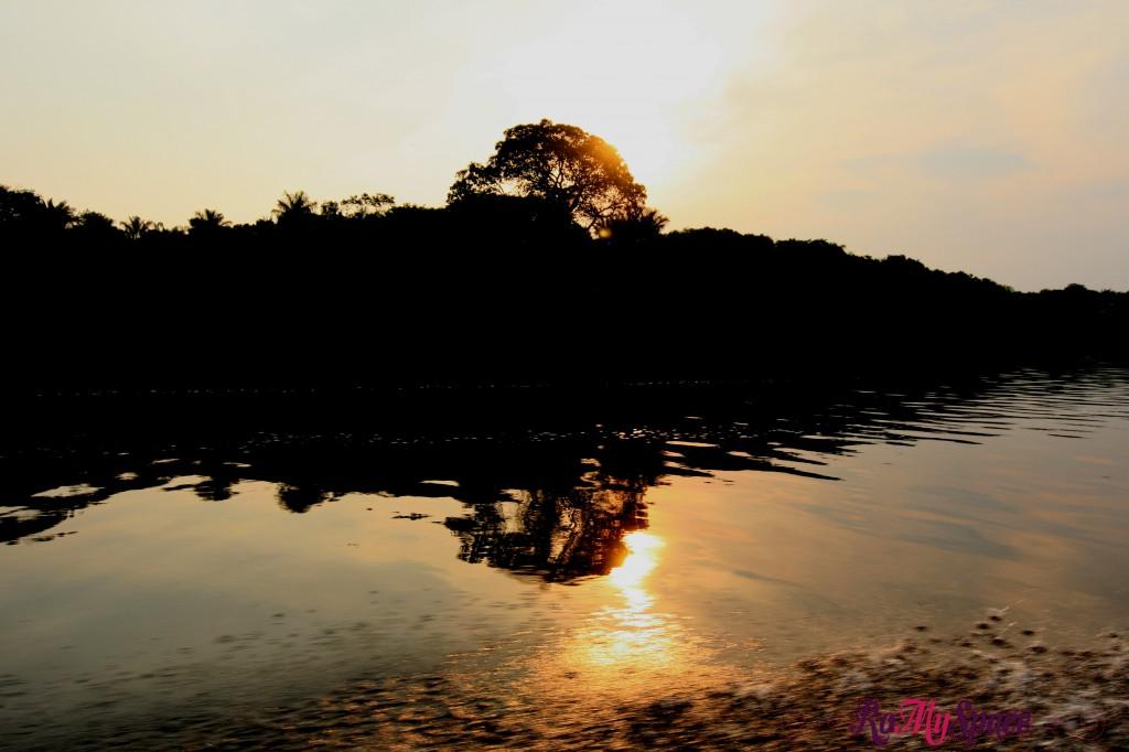 Tramonto sulla Foresta Amazzonica