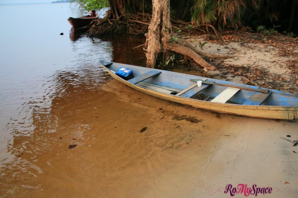 Rio Negro - Foresta Amazzonica