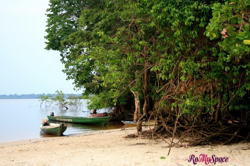 Spiaggia del Rio Negro - Foresta Amazzonica