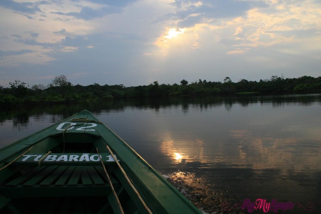 Navigando il Rio Negro - Foresta Amazzonica