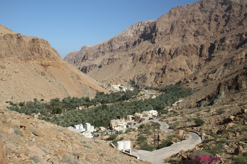 wadi tiwi