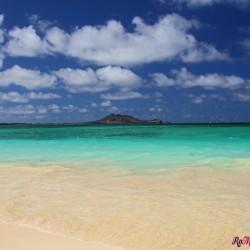 Oahu on the Road: La Costa Sud-Est