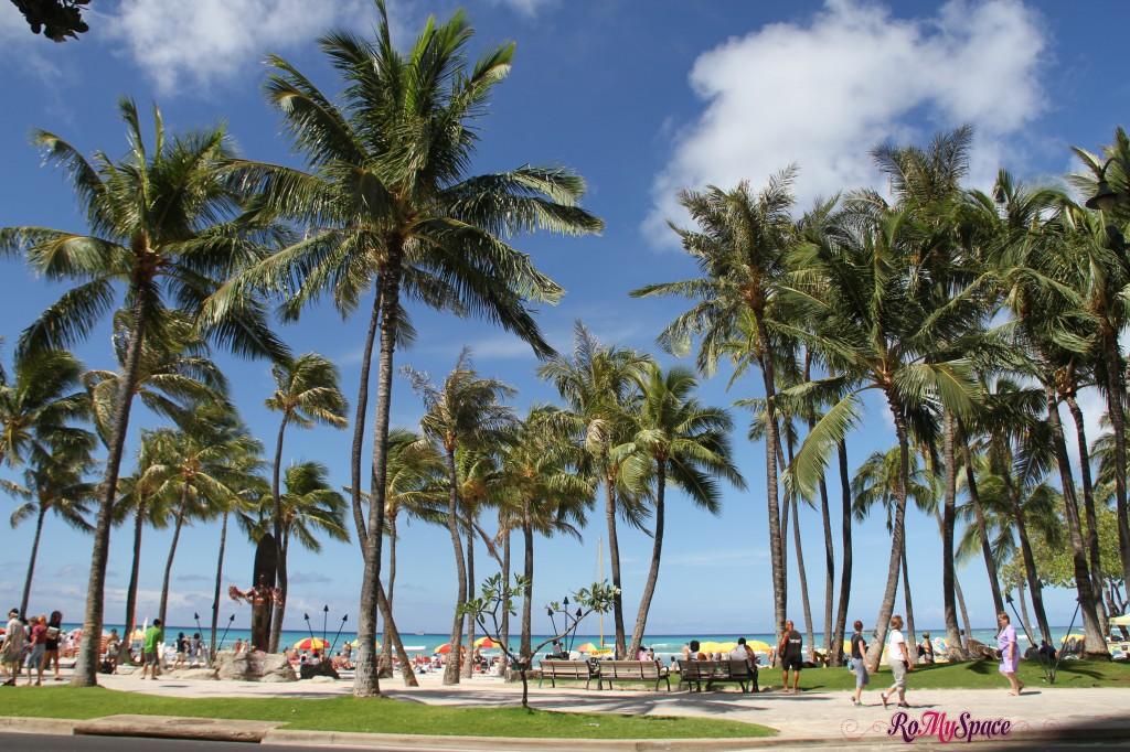 la spiaggia di Waikiki