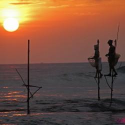 Galle: il forte portoghese e i pescatori trampolieri