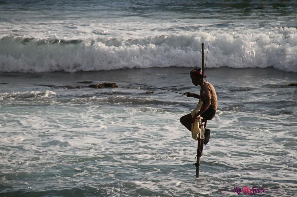 i pescatori trampolieri