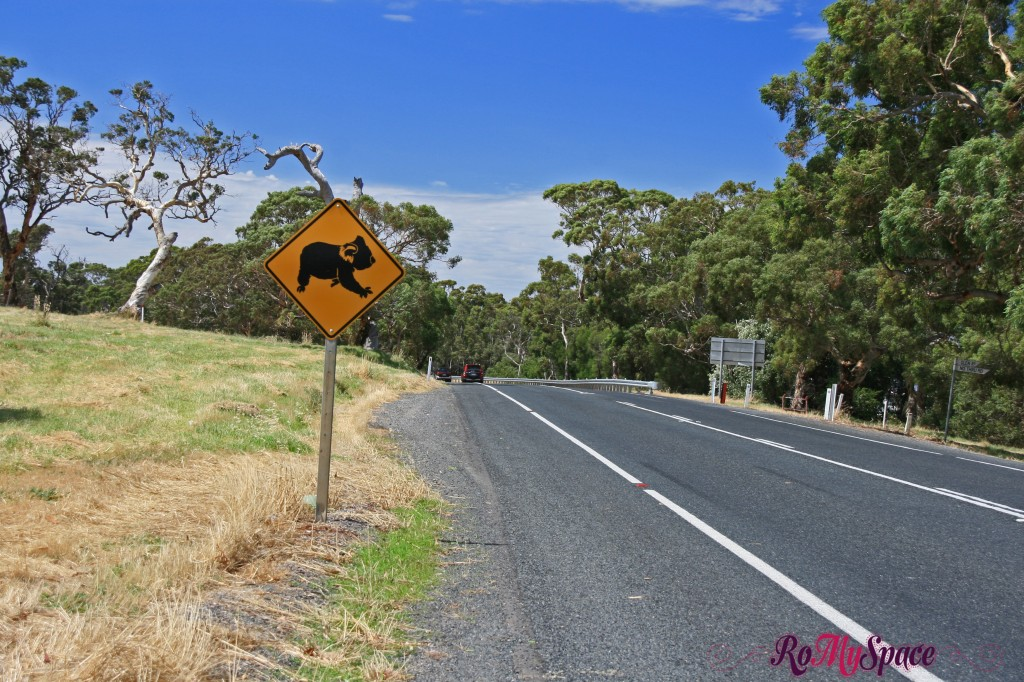 Adelaide - Mt Gambier