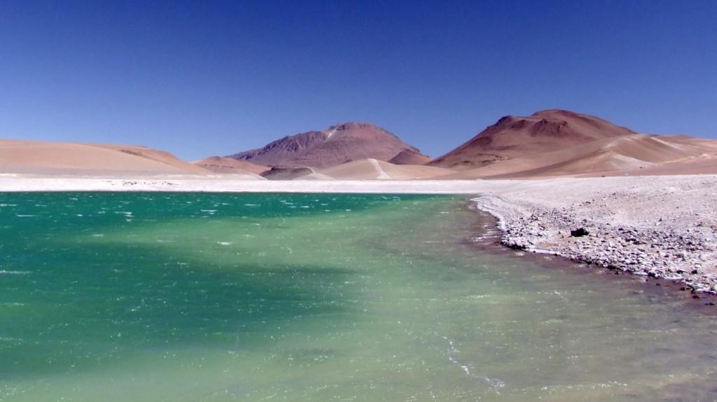 Atacam Laguna Quepiaco Credits A Duarte