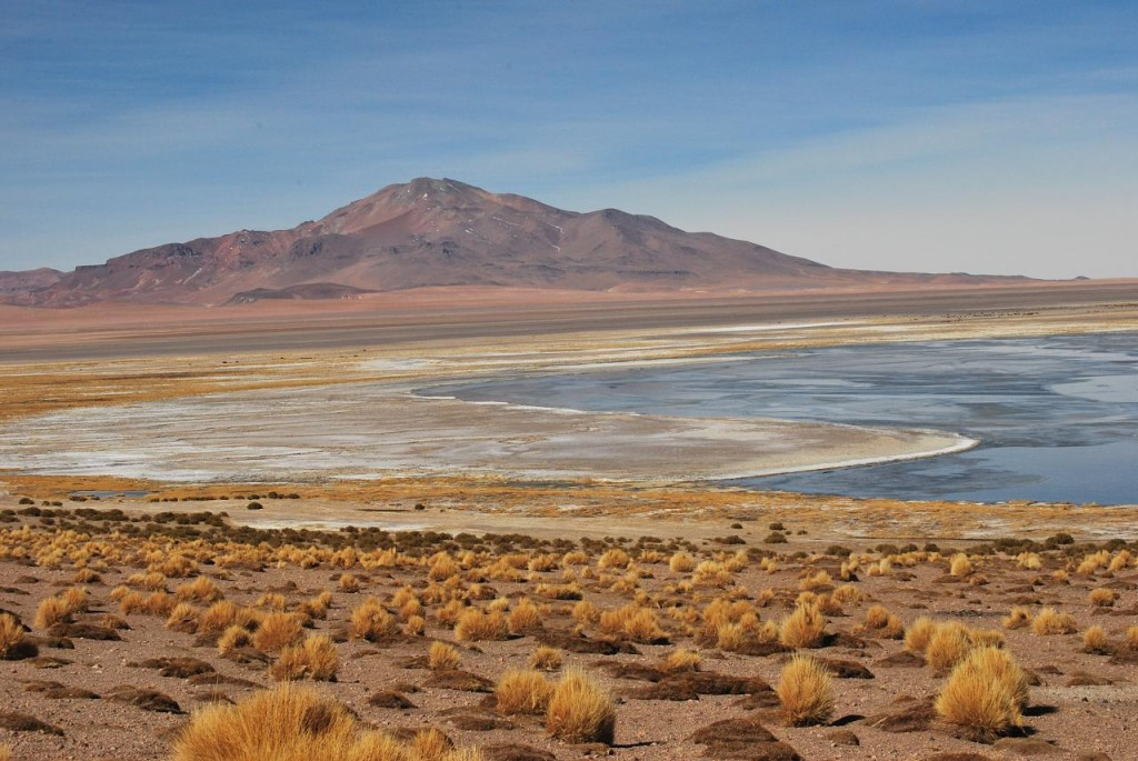 Atacama Credits Ana Raquel S. Hernandes