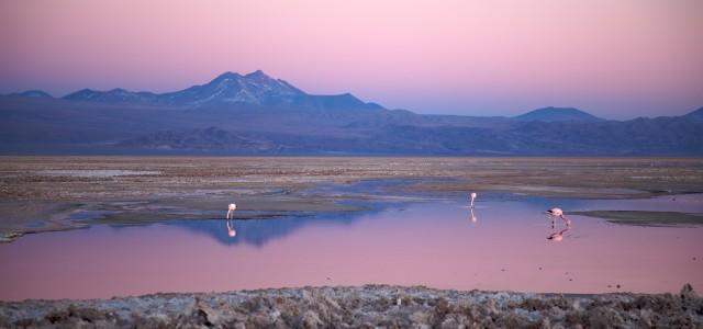 Marte? No, il Deserto di Atacama