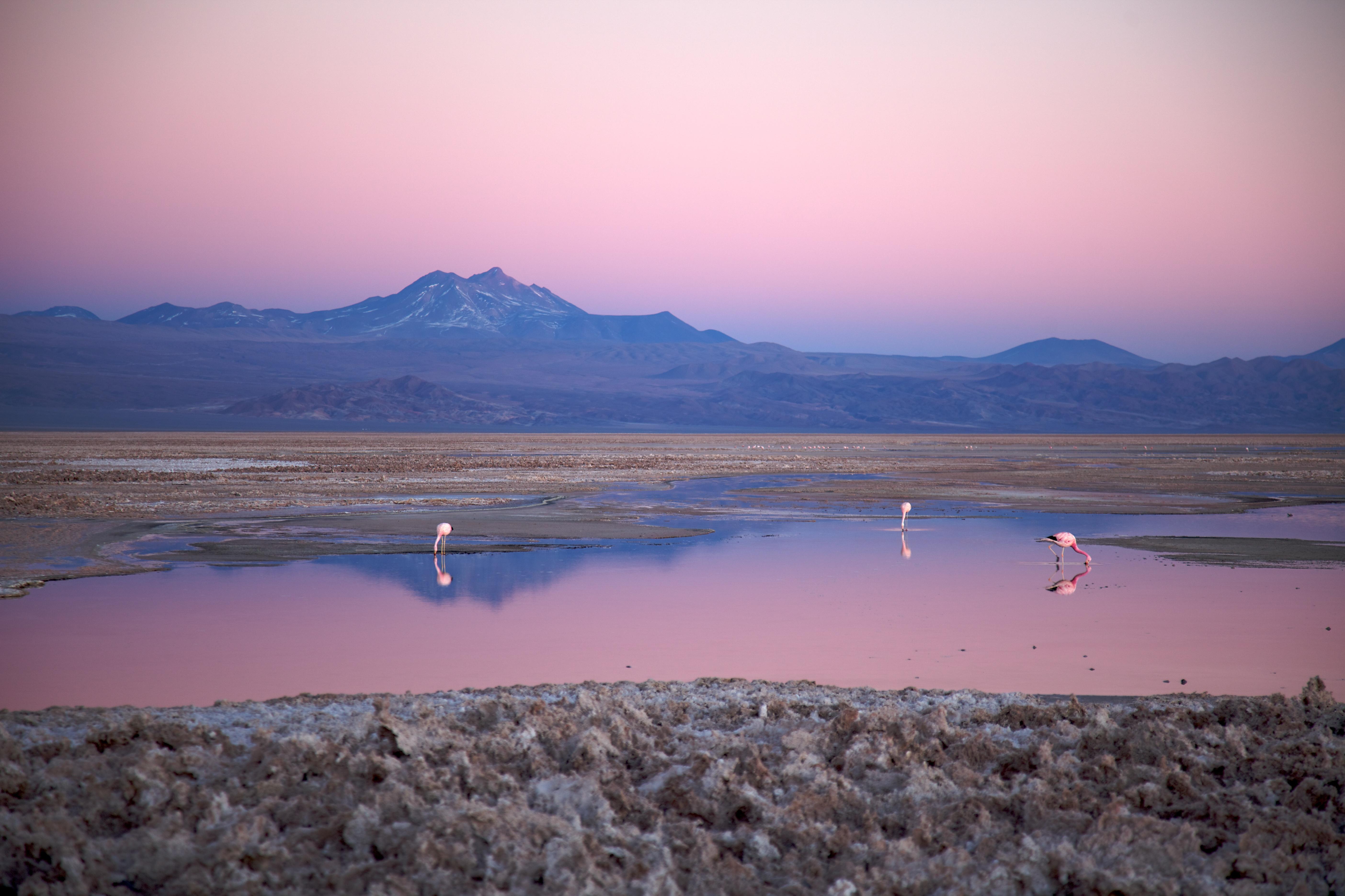Marte? No, il Deserto di Atacama | www.romyspace.it