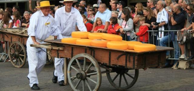 Gouda e Alkmaar, nella terra dei formaggi