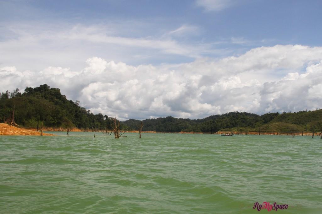 risalendo il fiume - batang ai national park