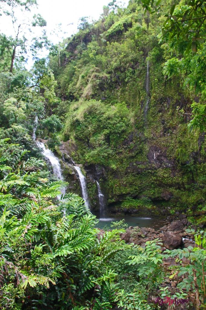 Hana Highway - una delle innumerevoli cascate