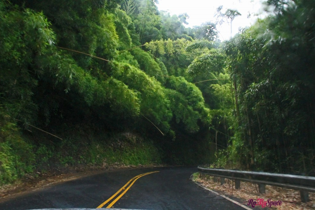 Hana Highway - la strada