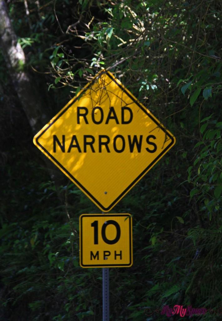 Hana Highway - Road sign