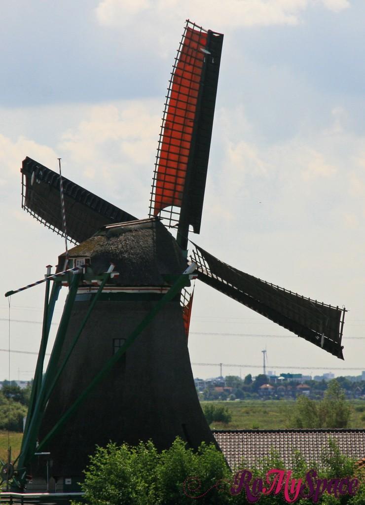 mulino a vento nella campagna olandese
