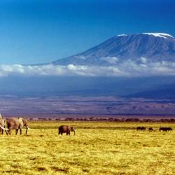 Tre vulcani da cartolina