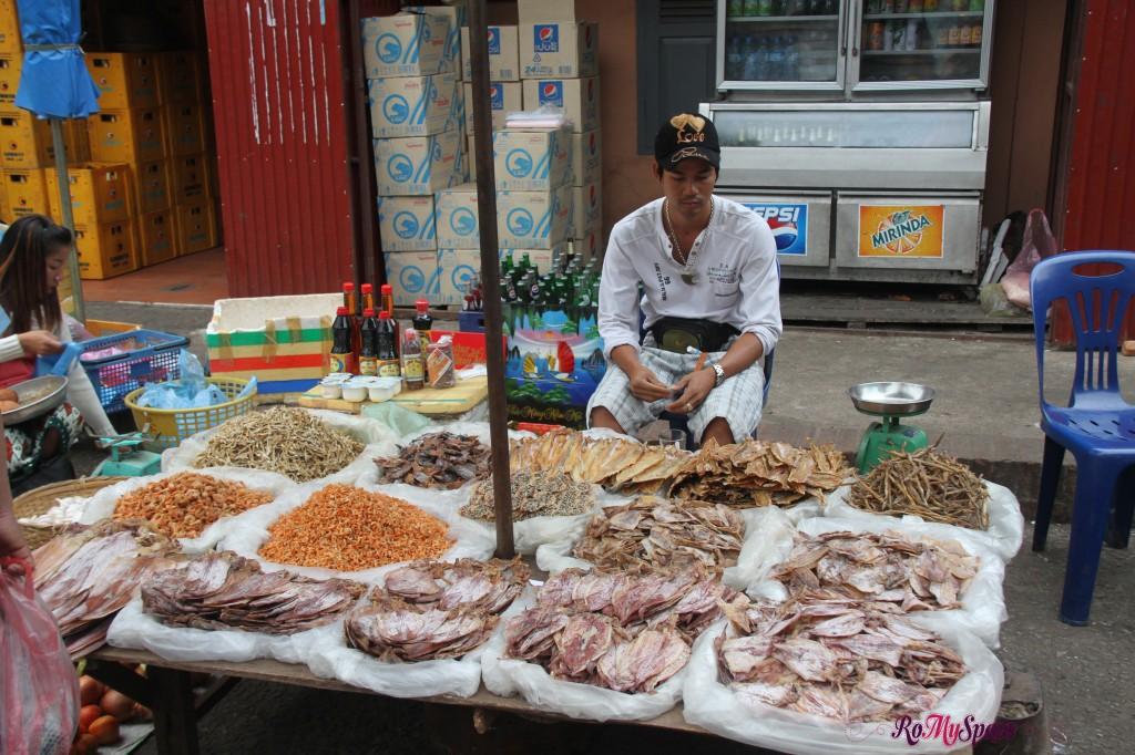 luang prabang_mercato_carrie (29)