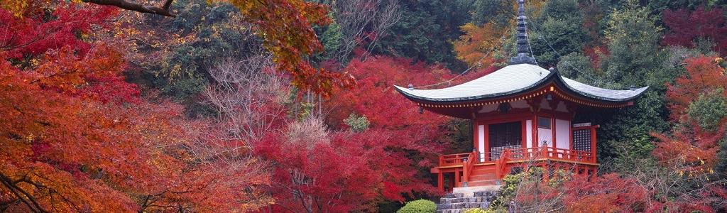 GIAP_Kyoto
