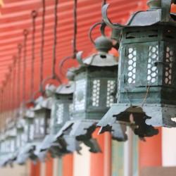 Nara, tra templi e cervi