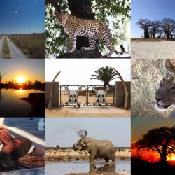 Alla scoperta dei Deserti dell'Africa del Sud