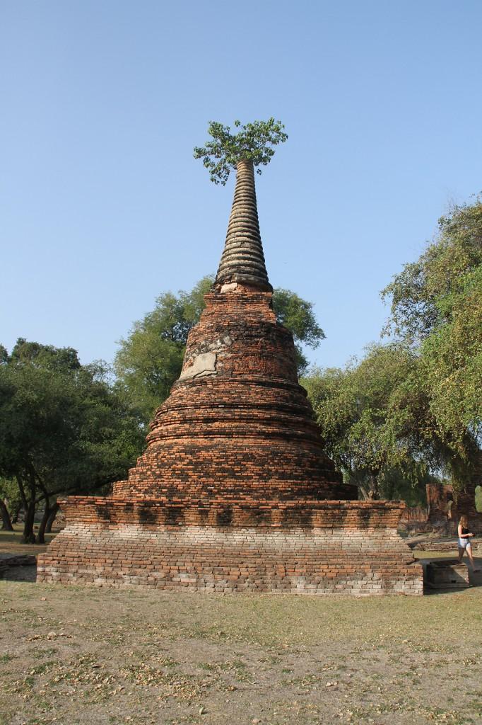 ayutthaya_phra si sanphet_carrie (81)