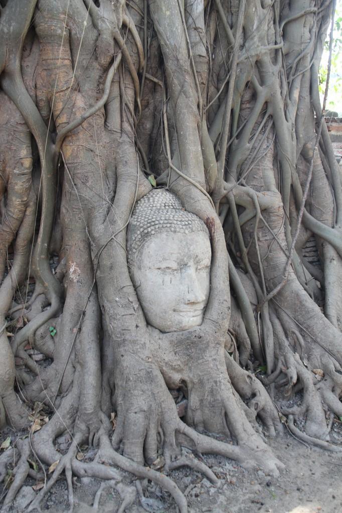 ayutthaya_wat phra mahathat_carrie (27)