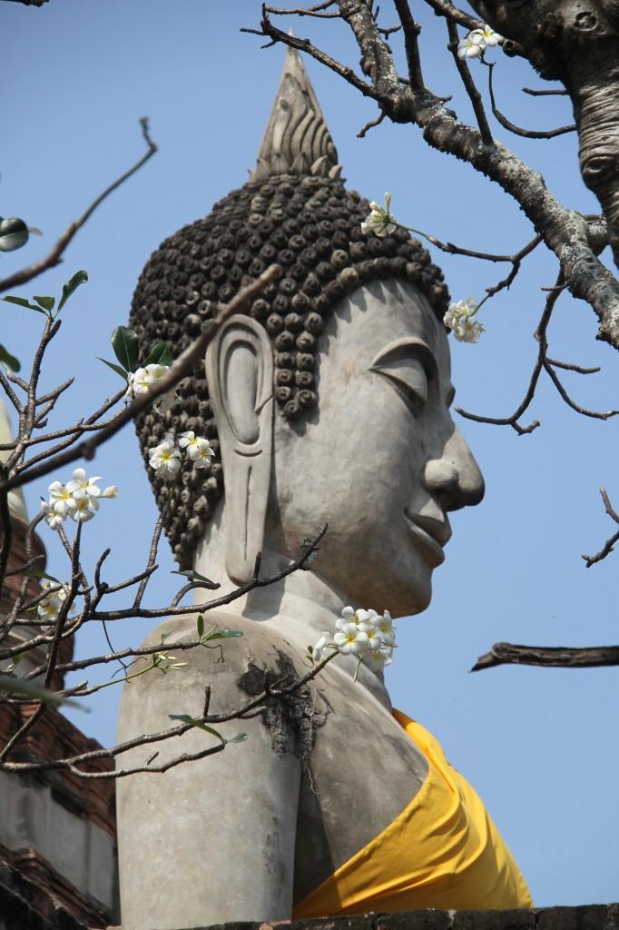 ayutthaya_wat yai chai monkhon_carrie (50)