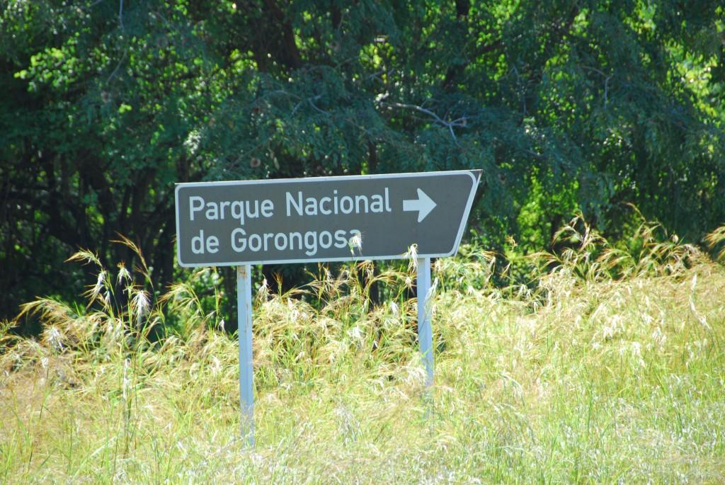 gorongosa F Mira