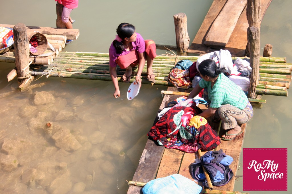 birmania sciure