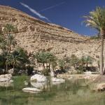 oman wadi bani khalid (3)