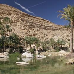 Viaggio in Oman: il deserto, i forti, le spiagge e Muscat