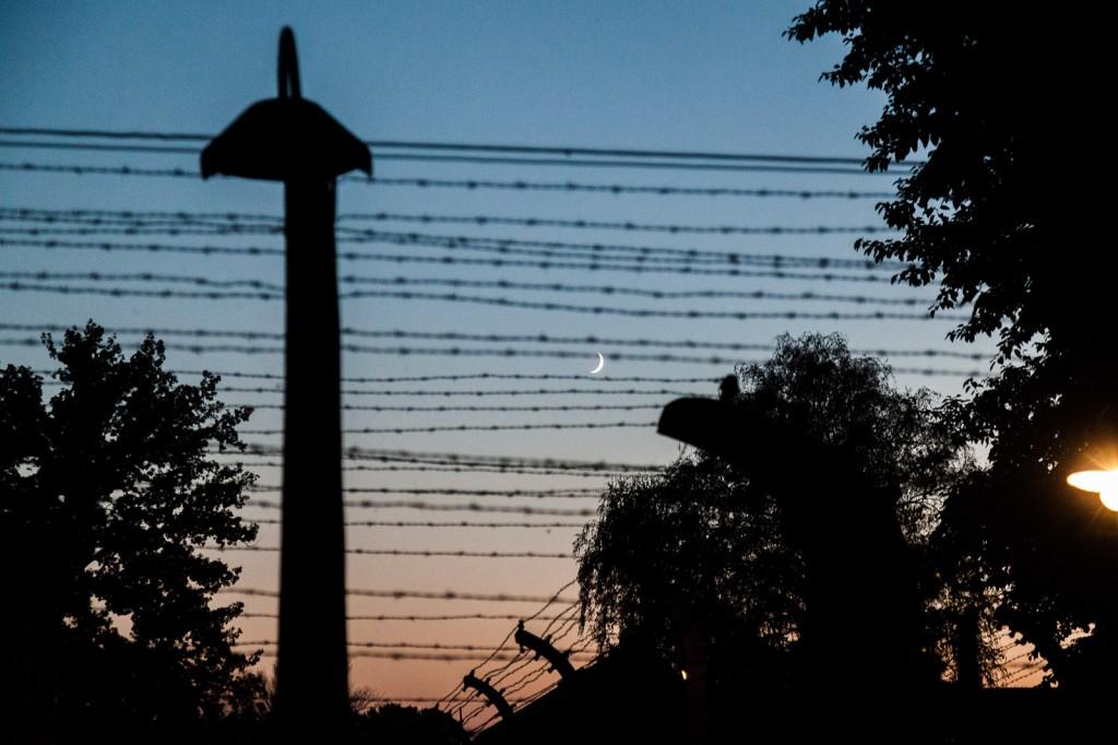 A ottobre ho visitato Auschwitz, quello che amo di questa foto è la sua sottile tristezza. La libertà è la fuori ma semplicemente non la si può raggiungere.